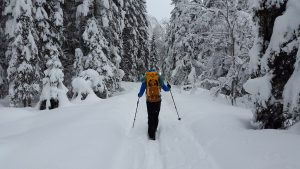 Non-skier hiking in snow
